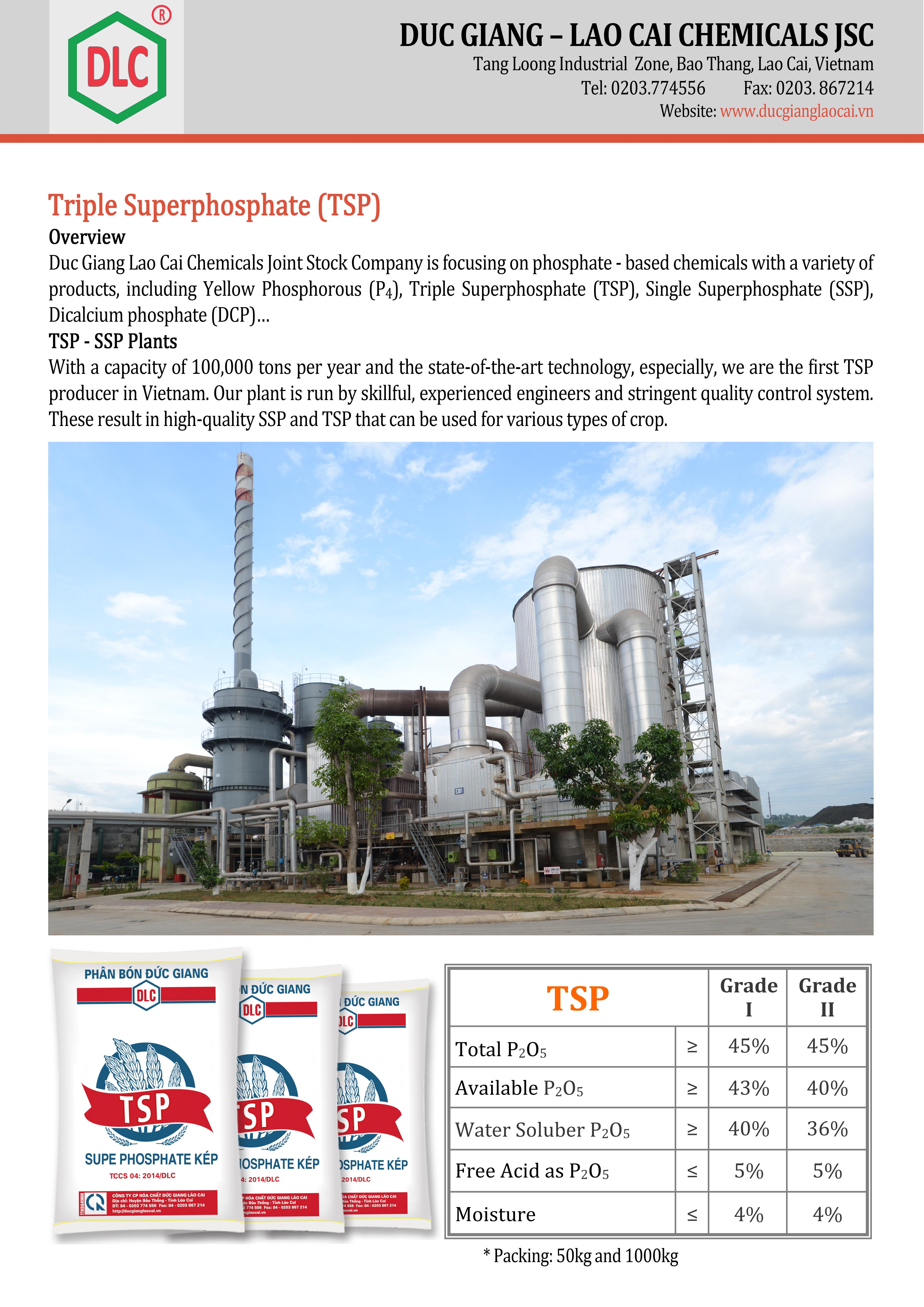 TSP Flyer-en