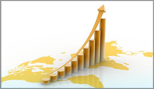 Báo cáo tài chính năm 2015